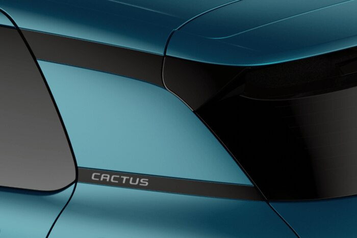 Rear Insert - Gloss black with 'Cactus' lettering