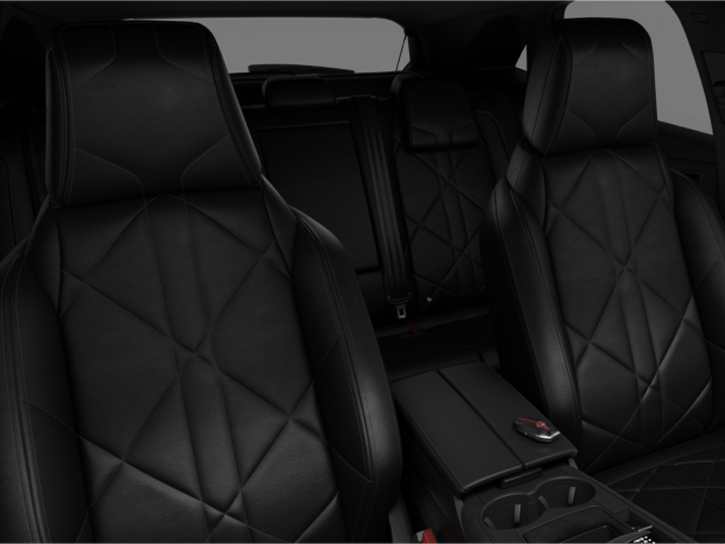 DS Inspiration PERFORMANCE Line LEATHER - Black Basalt grained leather