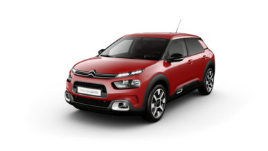 C4 Cactus Berlina 5 P - Shine