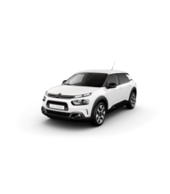 C4 CACTUS Pure Tech 110 S&S Shine Pack